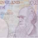 Darwin y la ciencia económica