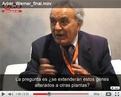 Arber Werner