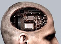 El cerebro a juicio