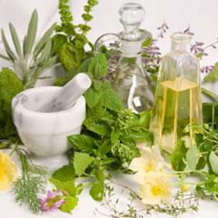 El suave encanto de las verdes medicinas alternativas (I)