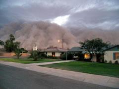 Fénix bajo la tormenta de polvo