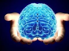¿Está nuestro cerebro diseñado para la felicidad?