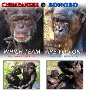 Las comparaciones morales entre primates humanos y no humanos son un non sequitur