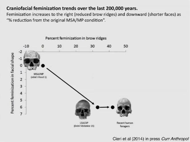"""Feminización del cerebro humano. ¿Fue esto lo que nos """"pacificó""""?"""