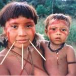 Guerreros Yanomamö. Coaliciones agresivas para trascender los vínculos locales
